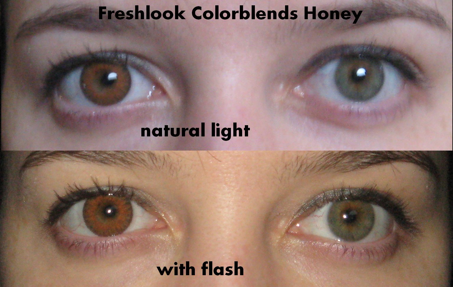 e77dfbf1509 Freshlook colored contact lenses from eyecandys These lenses are