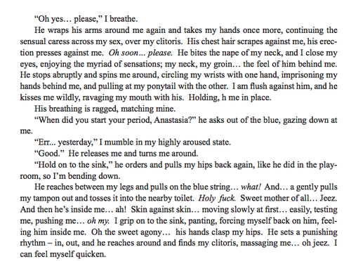 lit literature search  itt excerpts from 50 shades of grey