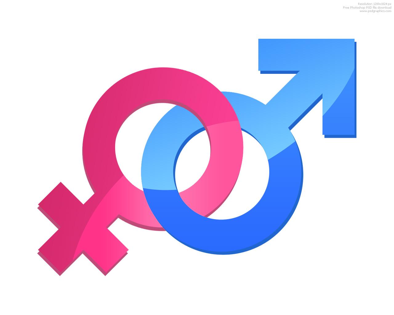 Female  Define Female at Dictionarycom